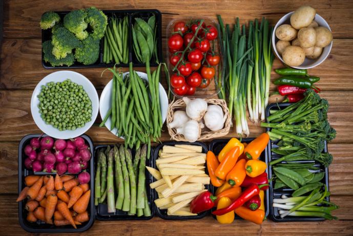 Gesunde Küche für verschiedenste Ansprüche