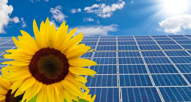 """Grüne Energie"" – Photovoltaik-Bilanz 2018"