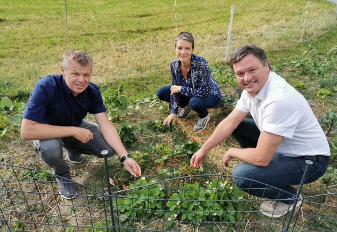 Klimaaktives Garteln im Kundler Oberfeld