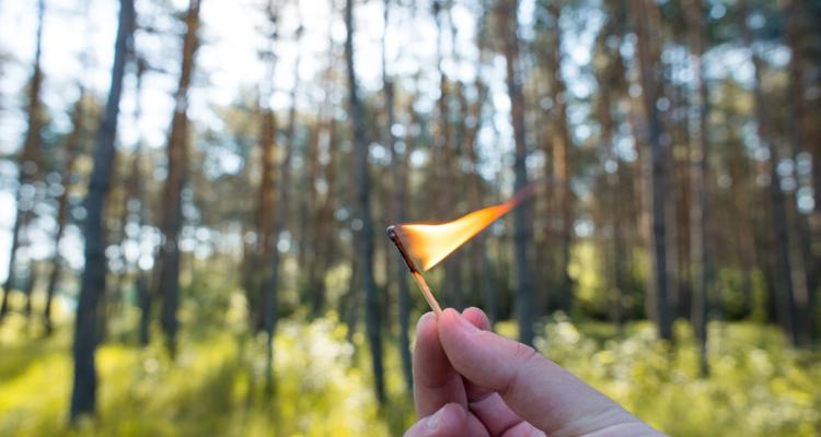 Waldbrandgefahr: Verbot von offenem Feuer