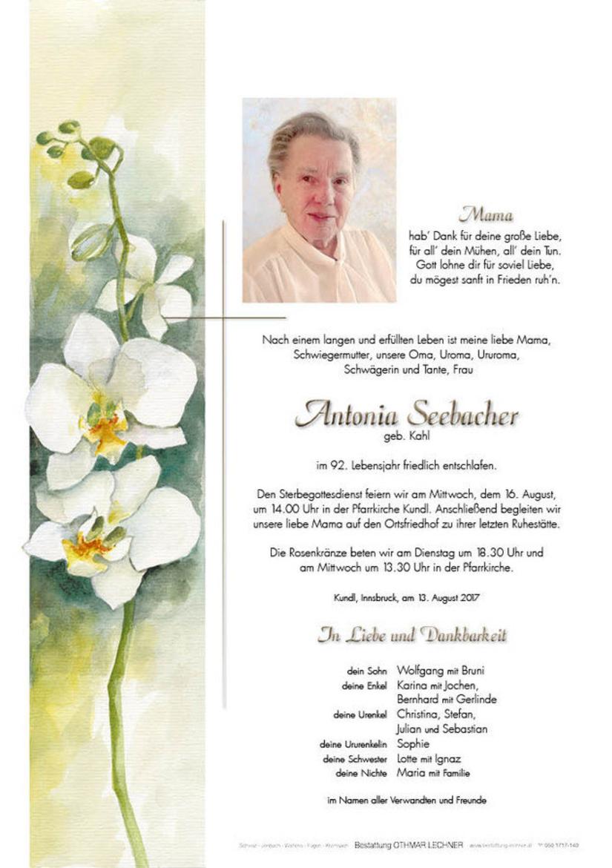 Antonia Seebacher